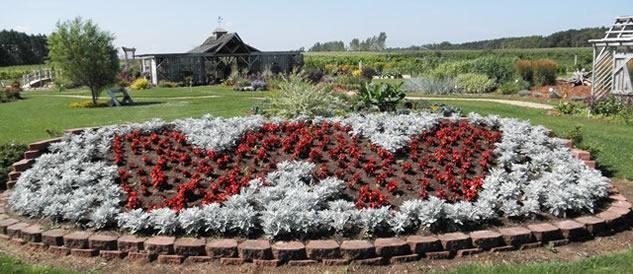 garden flowers arranged in W-shape